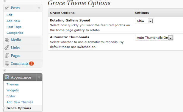 grace_theme_options
