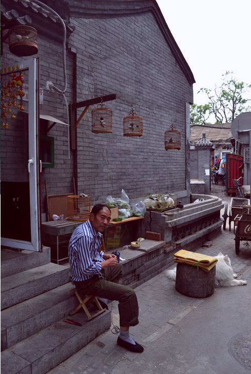 beijing-china-man-with-birds