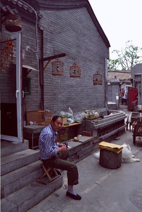 beijing-china-man-with-birds